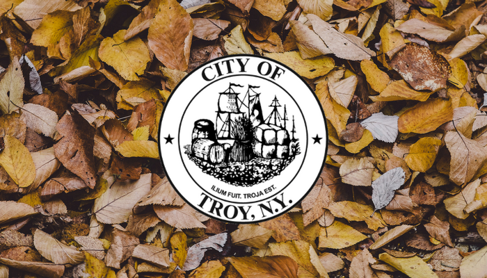 City of Troy Offering Free Leaf Collection Bags to Residents