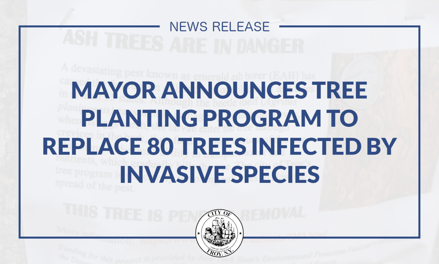 Mayor Madden Announces Tree Planting Program to Replace 80 Trees Infected by Emerald Ash Borer